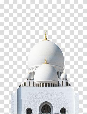 Mesquita Sheikh Zayed Mesquita Taj Mahal Hassan II, Taj Mahal PNG clipart