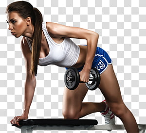 aptidão física centro de fitness exercício aeróbico, outros png
