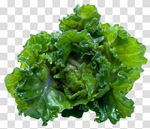 vegetais verdes, suco Smoothie Kale Ribollita Food, Kale png