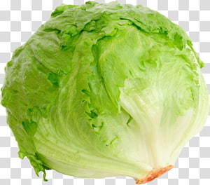 repolho verde, alface Iceberg alface Romaine BLT Alface de folha vermelha Salada, iceberg png