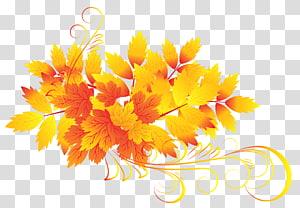 folhas amarelas e laranja, cor da folha de outono, folhas de outono PNG clipart