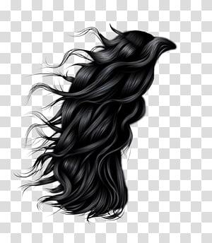 cabelo preto, penteado, cabelo das mulheres PNG clipart