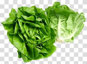 repolho verde, alface Butterhead alface Iceberg Celtuce Cozinha europeia, alface Butterhead png