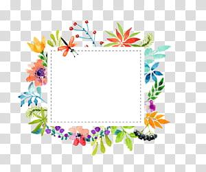 Material de fronteira de flores em aquarela, ilustração de quadro floral multicolorido retangular PNG clipart
