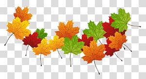 folhas de plátano, folhas de outono cor folhas de outono cor, folhas de outono PNG clipart