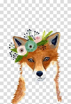 ilustração de raposa marrom, pintura em aquarela Fox Art Drawing, planta raposa png