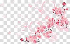 Flor de cerejeira euclidiana, lindas flores de cerejeira, flores cor de rosa e borboleta png