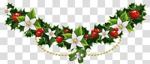 Azevinho azevinho comum de Natal, azevinho de Natal Garland com flores, flor de pétalas brancas e ilustração de cereja png