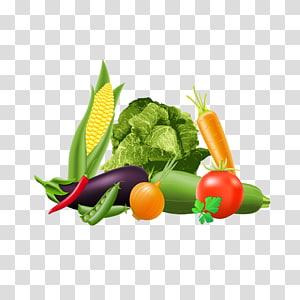 Repolho Ilustração Vegetal, Legumes Quebra-cabeças png