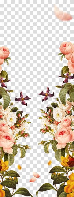Flores cor de rosa Rosas de jardim, pintados à mão fronteiras cor de rosa, ilustração de flores multicoloridas e pêssego png