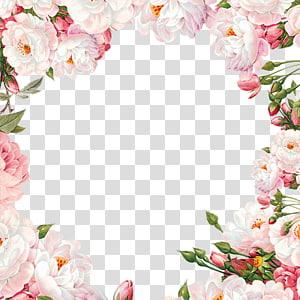 Material de quadro de flor pintada à mão, ilustração de flores rosa e rosa branca PNG clipart