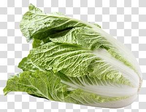 bóia verde, repolho roxo Salada Napa repolho vegetal, Napa repolho png