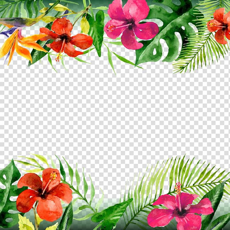 Folha Arecaceae flor, flores do verão, ilustração de hibisco vermelho e laranja png