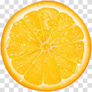 Limão Fatia de laranja, fatia de laranja, limão fatiado PNG clipart