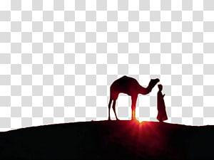 silhueta de camelo atrás de homem, Ramadan Eid al-Fitr Eid Mubarak muçulmano Jumuatul-Wida, pôr do sol sob o camelo PNG clipart