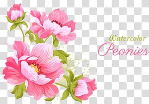 Flores cor de rosa Convite de casamento Pintura em aquarela, material de flores cor de rosa, flores de pétalas cor de rosa com sobreposição de texto png