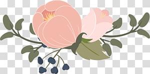Aguarela: Flores Gráficos escaláveis Aguarela desenho, Aguarela flores png