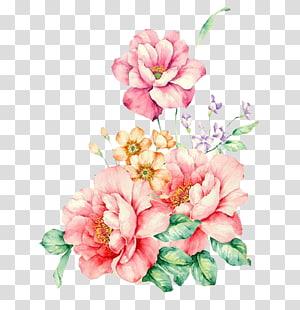 Flores cor de rosa Pintura em aquarela, flor rosa decorativa pintada à mão, flores rosa e laranja png