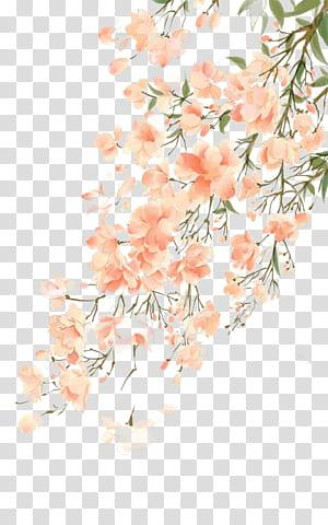 Pintura em aquarela flor, antiguidade bela ilustração aquarela, árvore de flores de cerejeira png