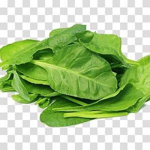 folhas verdes, alimentos orgânicos Salada de espinafre Nutriente Vegetal de folha, espinafre png