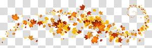 Cor da folha de outono, decoração de folhas de outono, quadro de folhas de bordo amarelo e vermelho PNG clipart