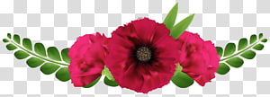 flor de pétalas rosa e verde, Guirlanda de flores de design floral, lindas flores vermelhas PNG clipart