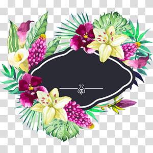 Jardim de flores, pintados à mão em aquarela bela flor bordas, preto, verde e amarelo pétala ilustração de flores png