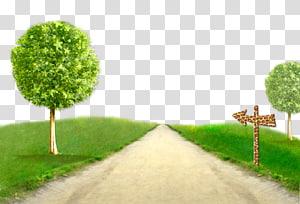 estrada entre ilustração de campo de grama png