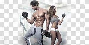 homem e mulher, segurando halteres, centro de fitness exercício físico aptidão física treinamento com pesos musculação, atleta png