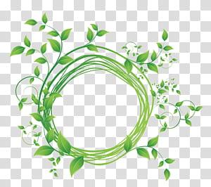 Folha verde, redondo, quadro, diagrama, planta verde, ilustração png