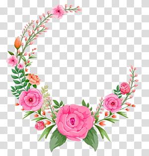 Flor rosa rosa, quadro de flores rosa, rosa e verde rosa quadro png