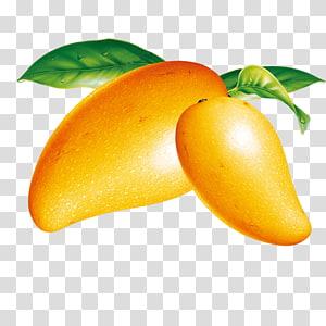 ilustração de frutas manga amarela, sorvete manga fruta, manga png