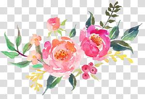 Decalque Etsy Interior Design Services, lindas flores frescas aquarela, rosa, verde e vermelho floral ilustração png