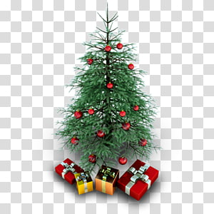 abeto evergreen natal decoração pinheiro árvore genealógica, árvore de natal, verde árvore de natal ilustração PNG clipart