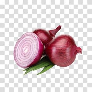 cebola, cebola roxa chalota vegetais alimentos orgânicos cebola branca, cebola PNG clipart
