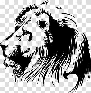 Estêncil de leão, leão pintado, estêncil de cabeça de leão png