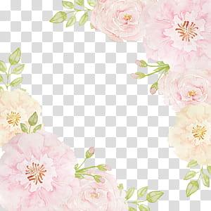 Flores rosa Praia rosa, bordas de flores, borda de flor rosa e bege png