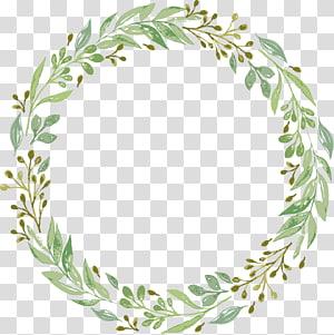 Convite de casamento Guirlanda de grinalda, guirlanda de folhas verdes, grinalda de folha verde redonda PNG clipart