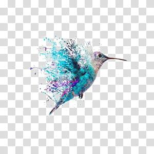 Beija-flor tatuagem arte pintura, aquarela beija-flor, pássaro colorido voando png