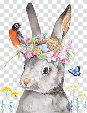 coelho cinzento com ilustração de coroa de flores, Holland Lop Rabbit Drawing Illustration, coelho png