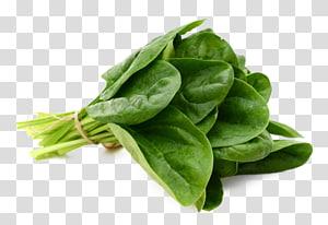 vegetal verde, espinafre folha vegetal comida, espinaca png
