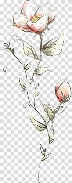 Flor, flores, flores, papoilas cor de rosa com fundo azul png