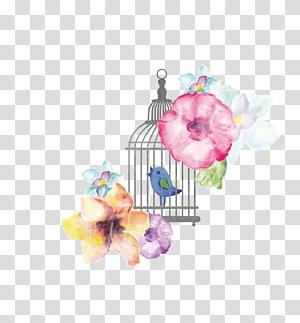 ilustração de flores de cores sortidas, gaiola Pintura em aquarela, pássaros e flores PNG clipart