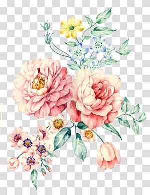 Moutan peony Pintura em aquarela, aquarela pintada à mão, peônia branca, flores de rosas cor de rosa e margarida rosa flores ilustração png