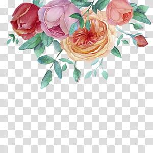 Pintura em aquarela Rosas do jardim, quadro decorativo pintado à mão em aquarela, pintura em vermelho, roxo e laranja PNG clipart