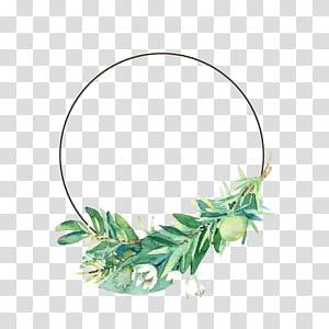 Folha flor pintura em aquarela, pequenas folhas e flores frescas fronteira, planta verde PNG clipart