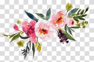 arte cor-de-rosa das flores petaled, ramalhete da aguarela png