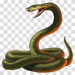 Cobra verde PNG clipart