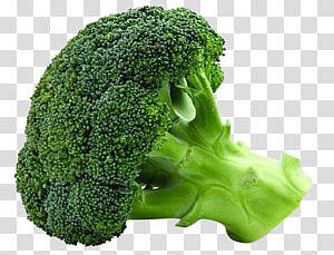 Vegetal Alimentos orgânicos Brócolis Semente Couve-flor, Legumes brócolis, brócolis vegetal PNG clipart