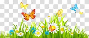 Flor, grama chão com flores e borboletas, borboletas voando com ilustração de flores png